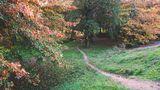 FR: Le petit chemin...... von PERSYN Thérèse