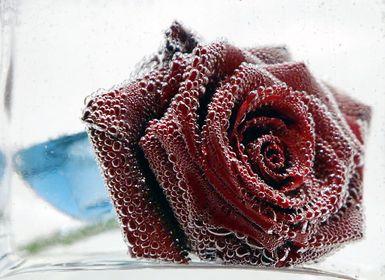 Projekt: Kreativ mit Blüten