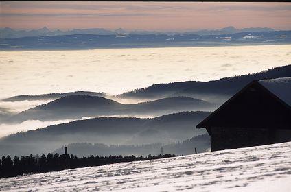 Vogesen / Vosges