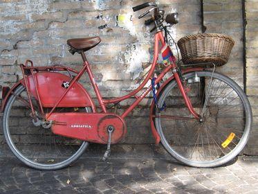 Bike Fascination