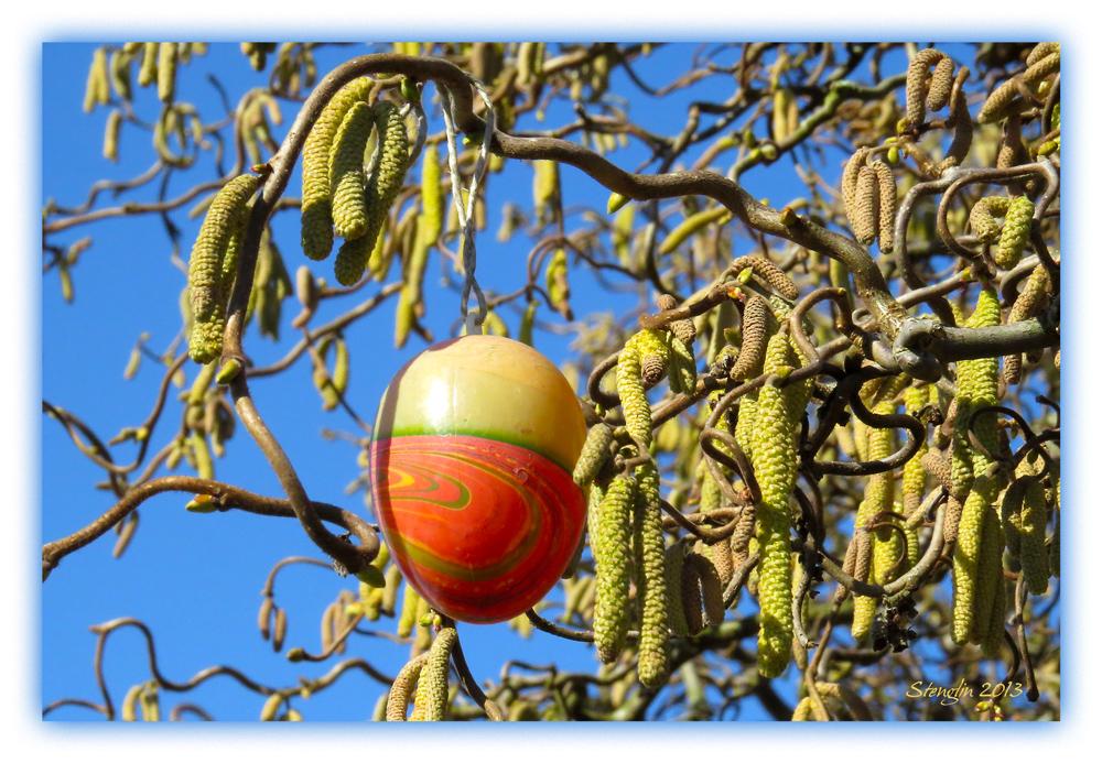 79-13 Ein Freiland-Ei hängt!