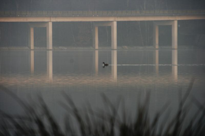 7h15 lac de Feronval