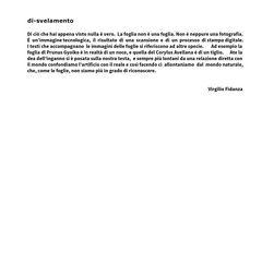 """8 Ate Progetto VIRGILIO FIDANZA Intervista per """" qualche domanda a..."""""""