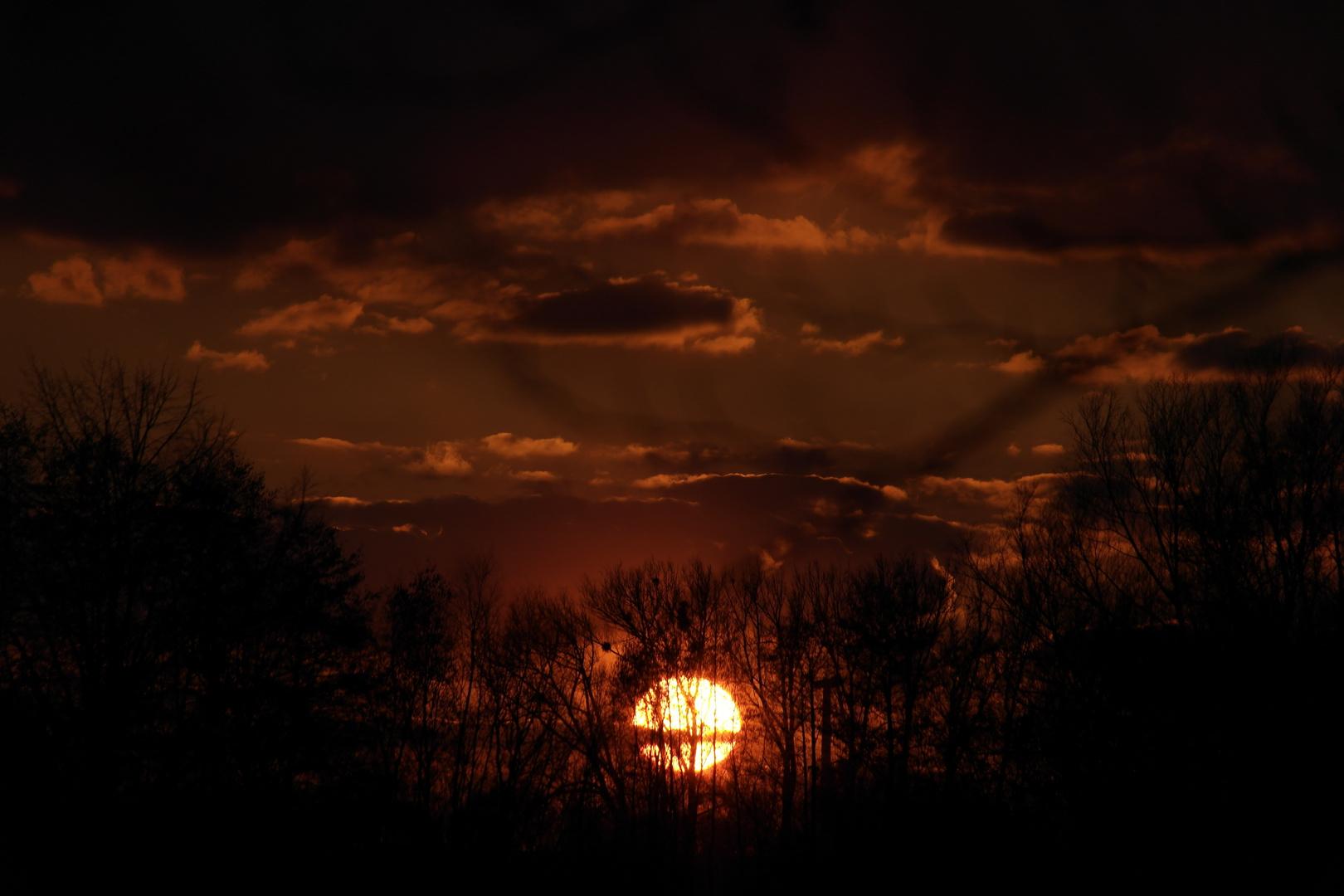 8 Lichtminuten hinter dem Wald