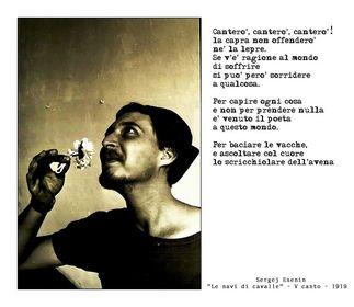Fotografia e poesia