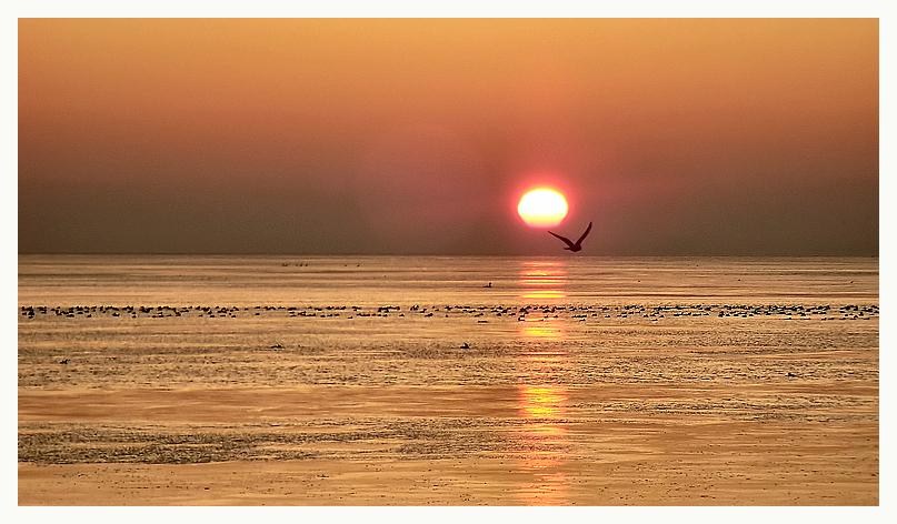 8:45 Uhr >>> neugeborene Sonnenkraft ...