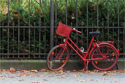 05 - rote Fahrräder