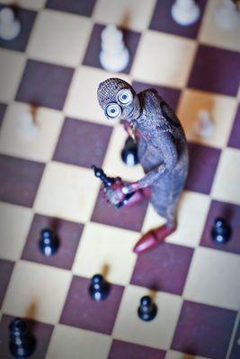 ° #9 - Schach... °