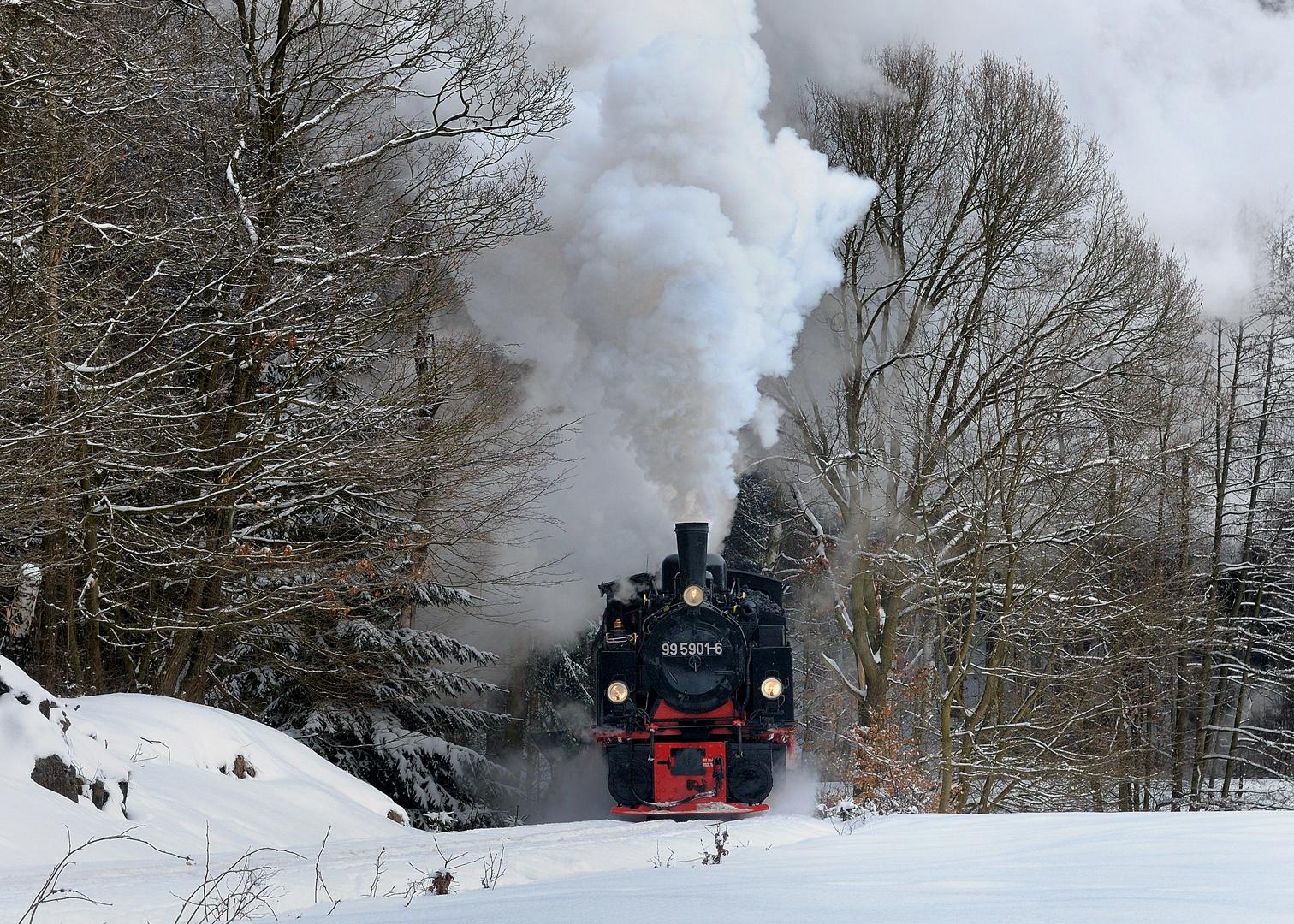 99 5901-6 Reichsbahnzug im Selketal
