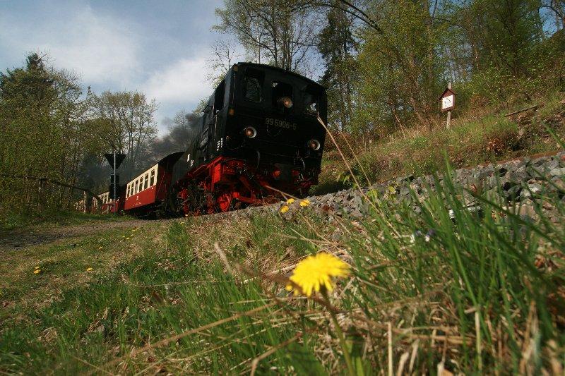 99 5906 Frühlingserwachen am Bahndamm 26.04.09