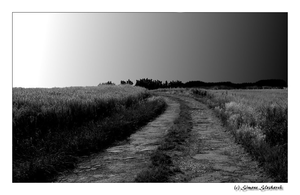 ~ A Bend in the Road ~