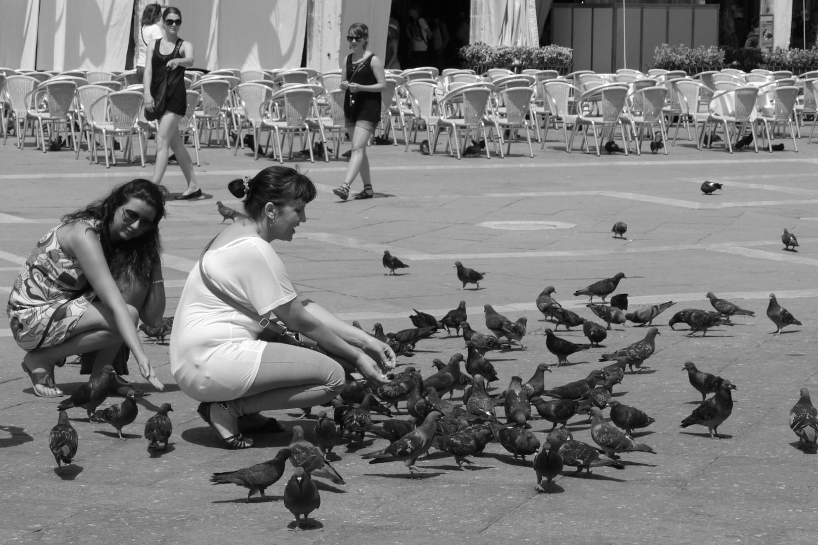 A Birdie - Venezia-Style