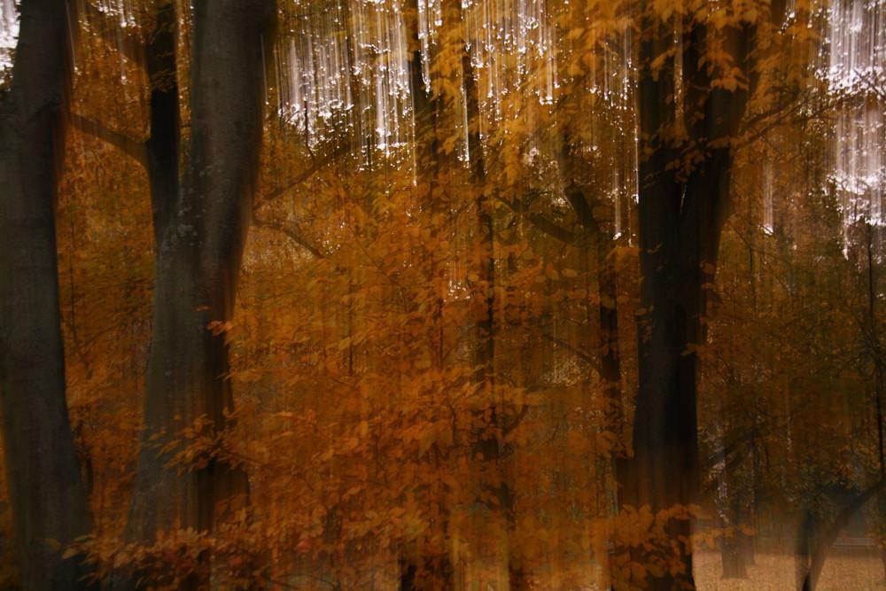 A bissl Herbst