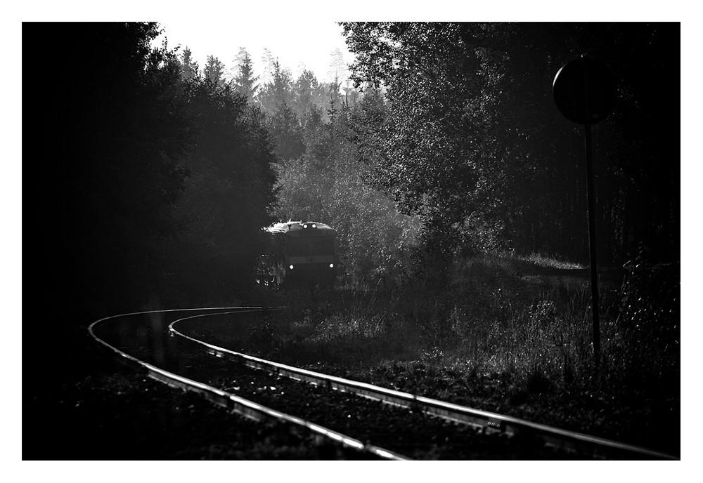 """A branchline in the """"Småländska höglandet""""... #2"""