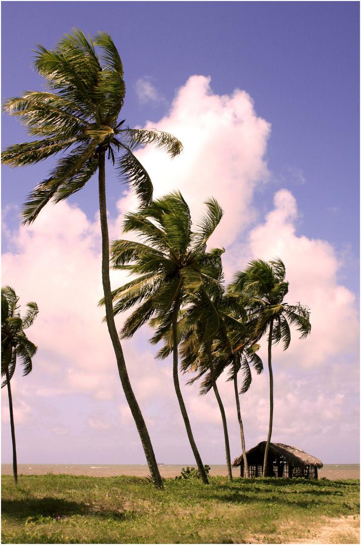 A Cabana ...