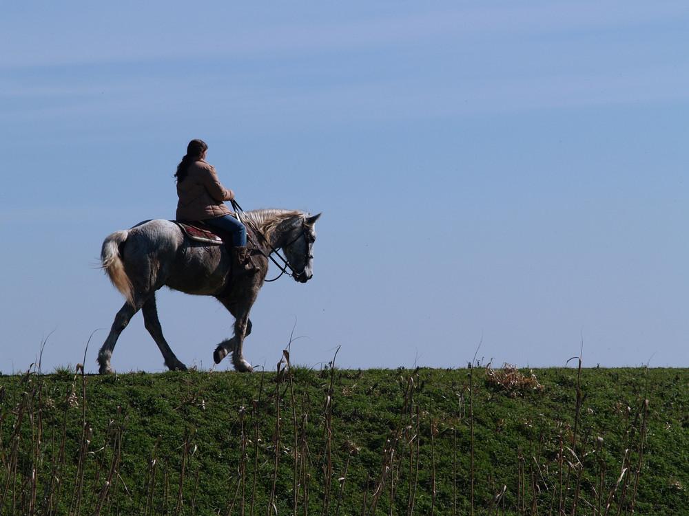 A Cavallo sull'Argine
