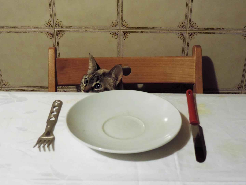 a cena