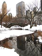 A cold day in Central Park