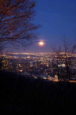 A cold night in Montreal