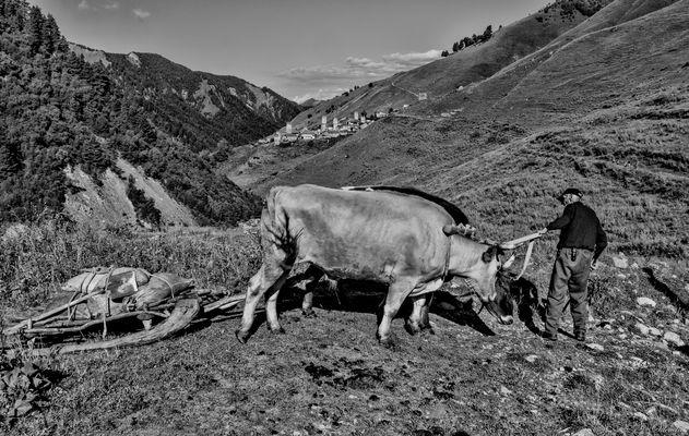 A day in Adishi, Svaneti.