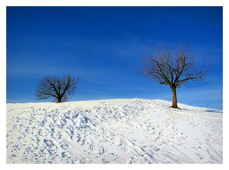 A dream in blue/white