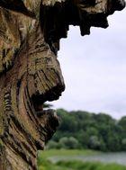A face like a rock