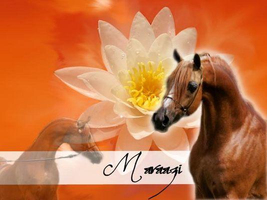 A horse..