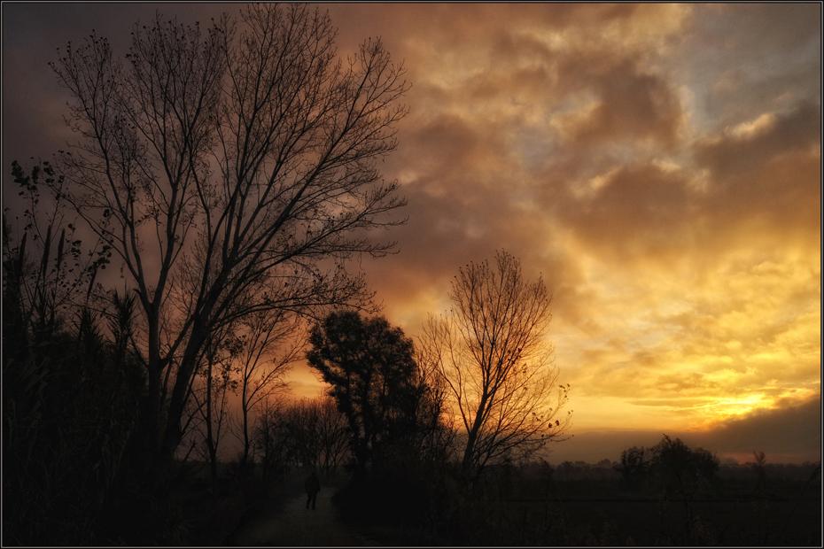 A la luz del amanecer