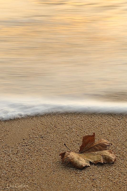 A la orilla