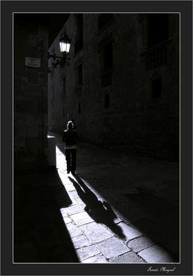 A la Sombra de RAISSA