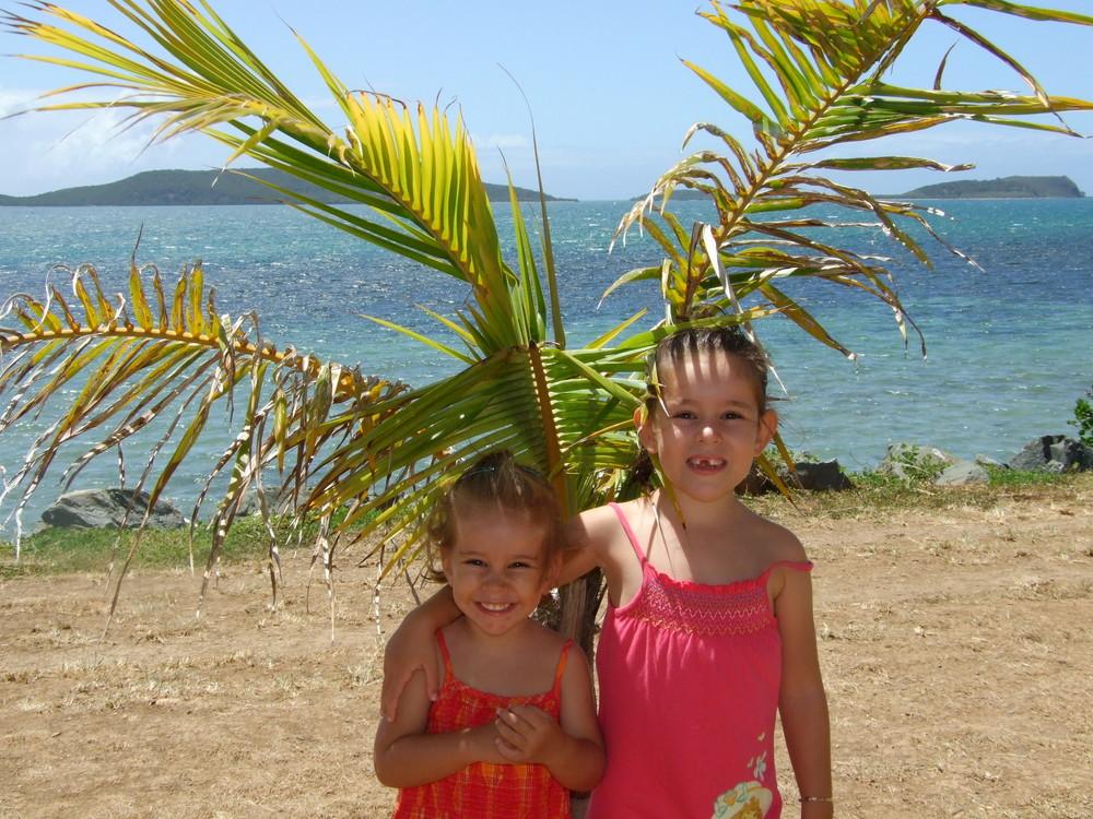 à l'ombre du palmier !!