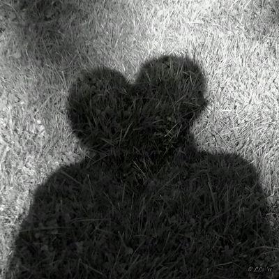 à l'ombre d'une vie imaginée