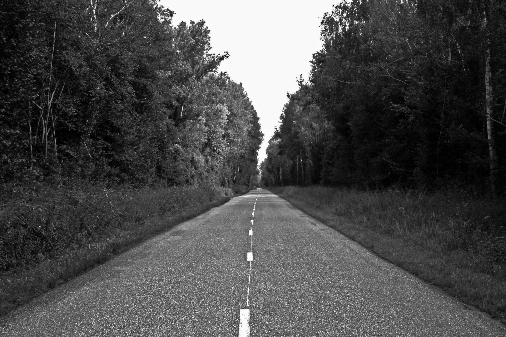 A long lonely road