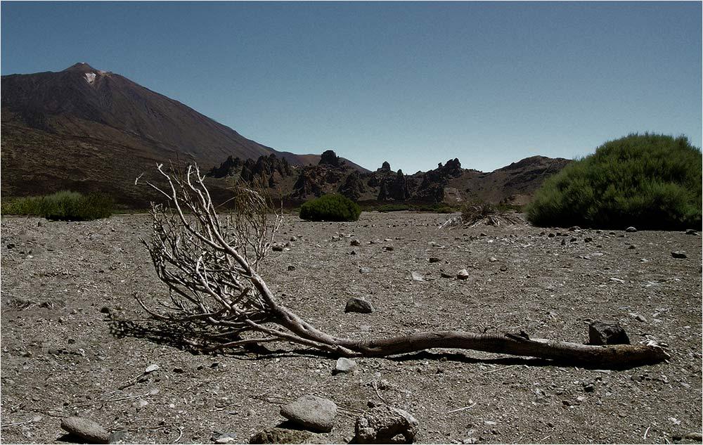 A los pies del Teide