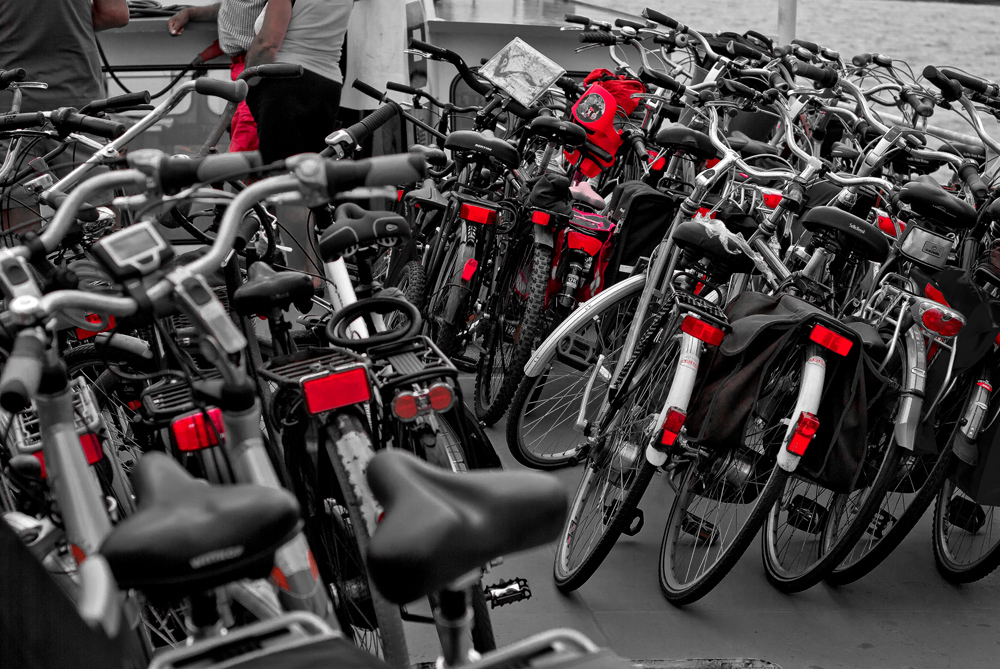a lot of bikes