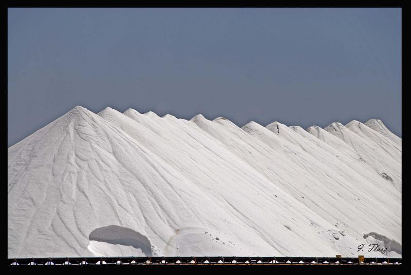 A LOT OF SALT