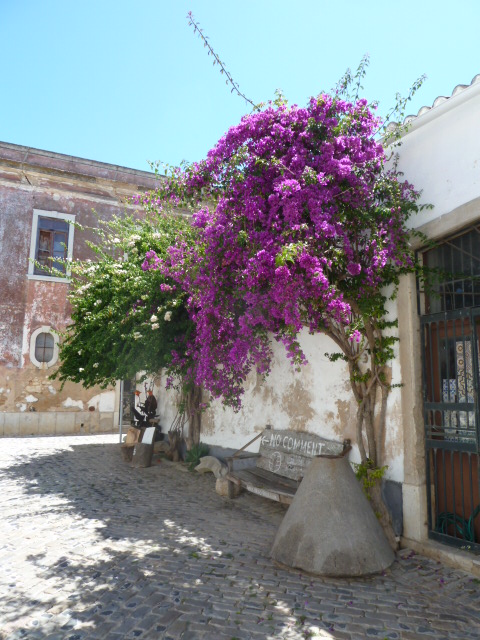 A lovely little street in the Old Town Faro