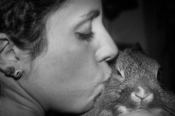 a loving bunny....