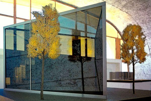 A Marseille les arbres poussent à l'intérieur