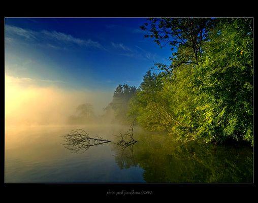 ... a misty morning ...