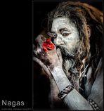 A Naga Babas Life