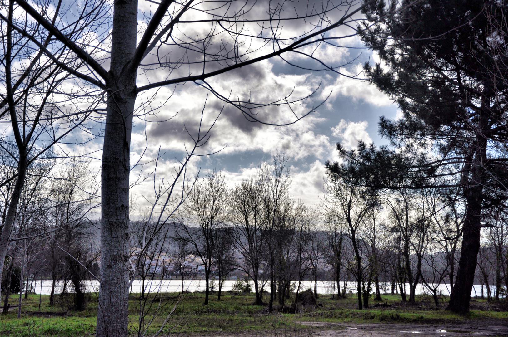 A orillas del Miño