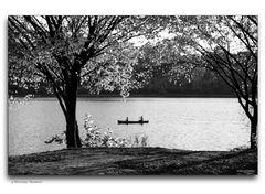 a Potomac Moment