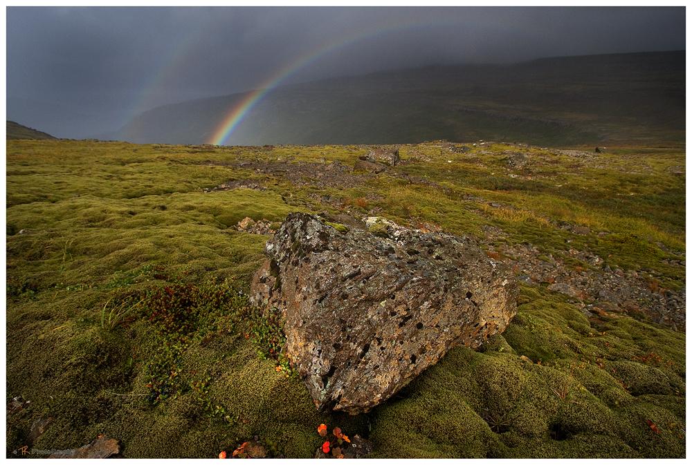 A Rainbow in the Dark....