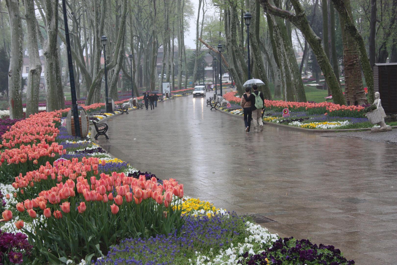 A rainy day ın Istanbul ( 2 )