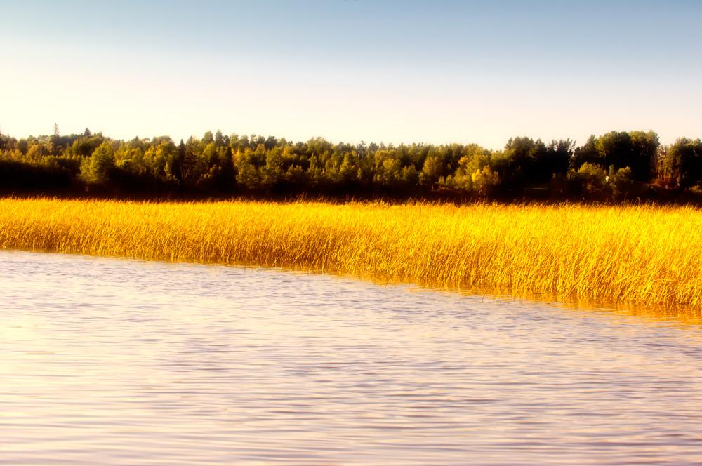 a river called miramichi ...
