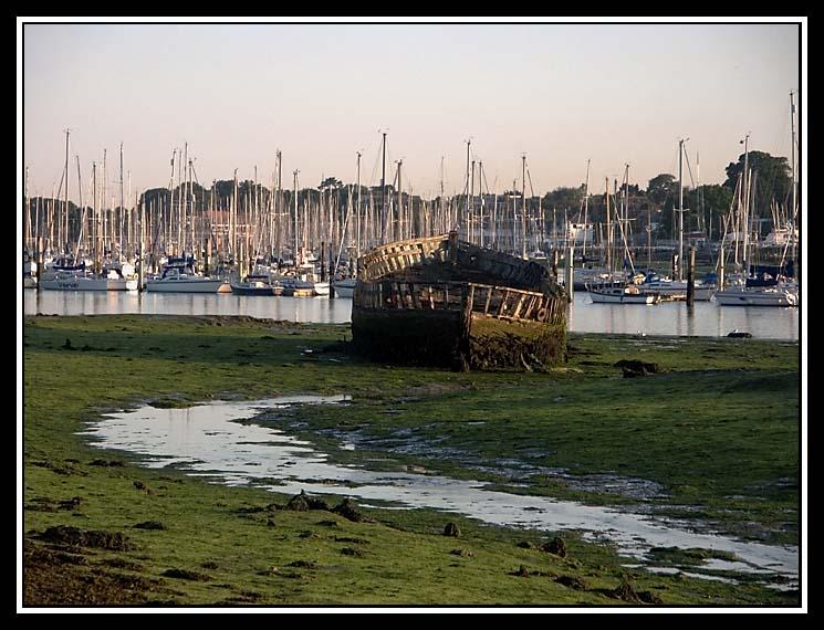 A Rotting Hull