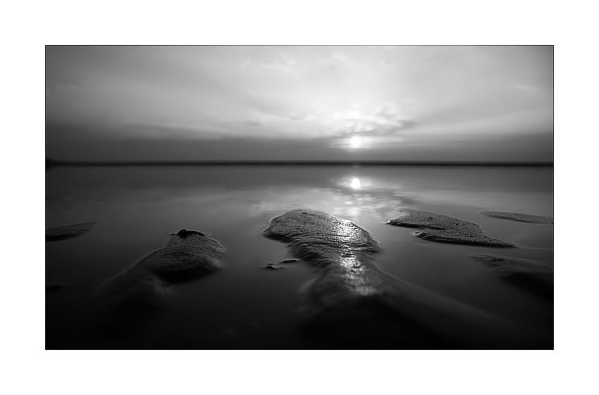 A Self Transforming Landscape II