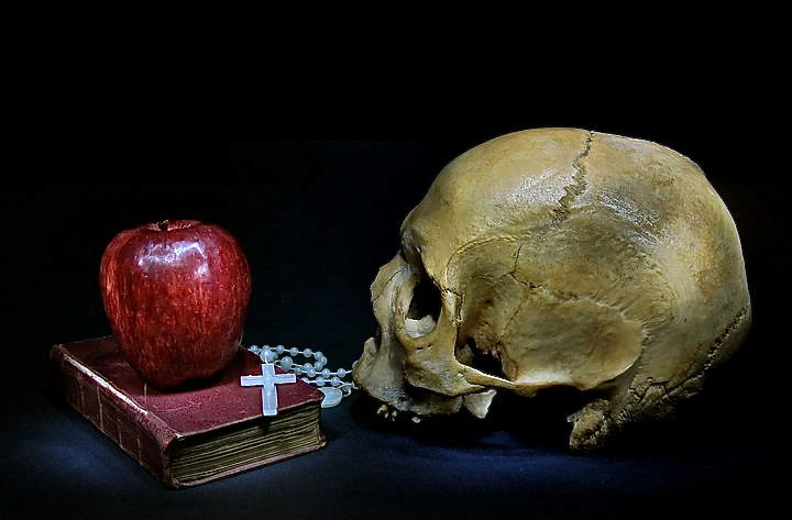 A skull and an apple