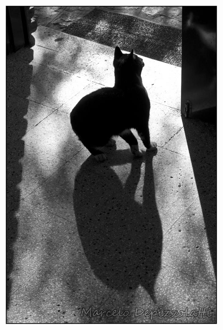 A sombrado